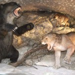 Медвежья пещера